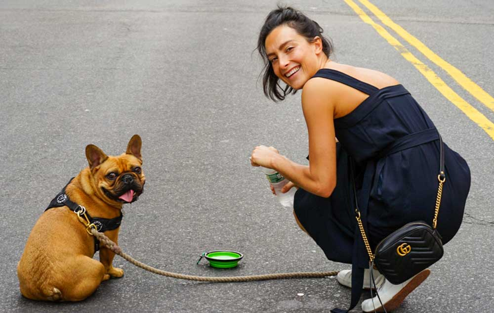 Are French Bulldogs Good Running Companions & Partners