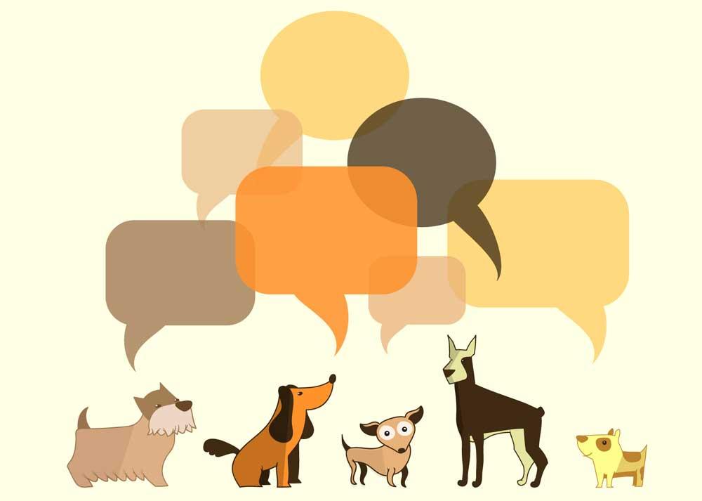 Dogs Communication