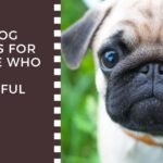 Dog Breeds For Stressful Jobs people