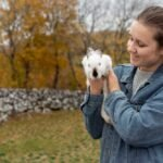 Cost of Buying and maintaining a rabbit