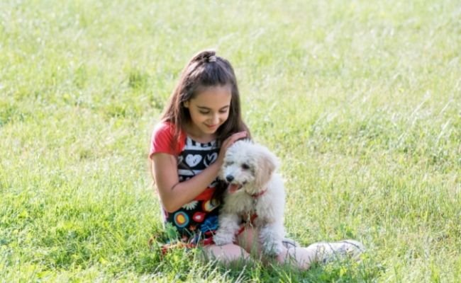 Are Poodles Good With Kids?