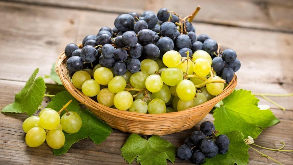 different kinds of grapes