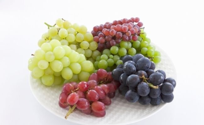 What Kind of Grapes Can Hamsters Eat?