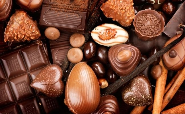 Are All Chocolates Dangerous for Dogs?